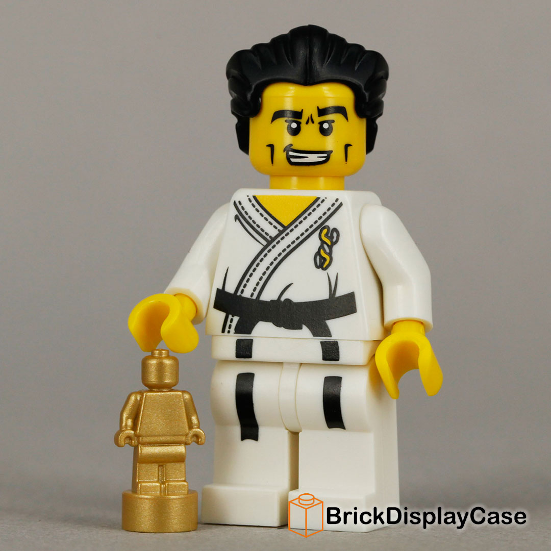 Karate Master - 8684 Lego Minifigures Series 2